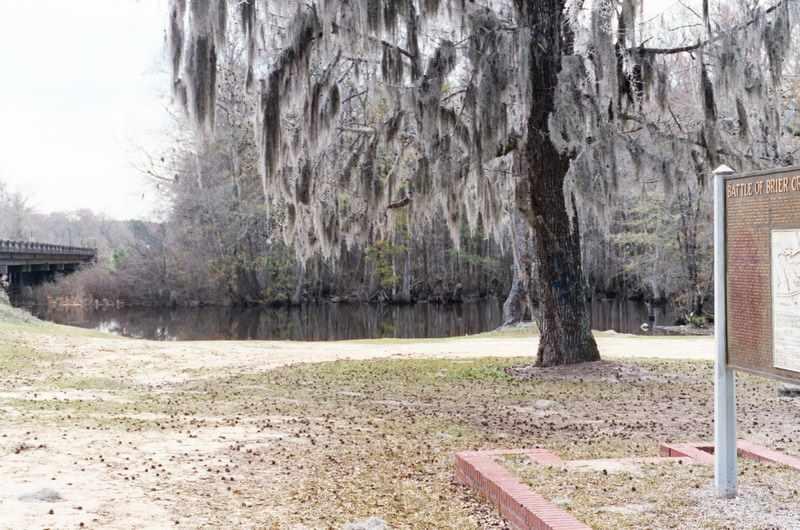 Battle of Brier Creek site