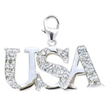 14k White Gold Diamond USA Charm