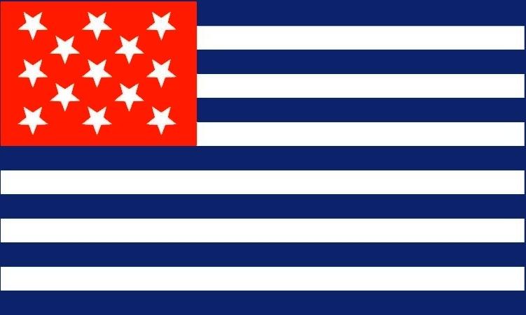 Fort Mercer Flag